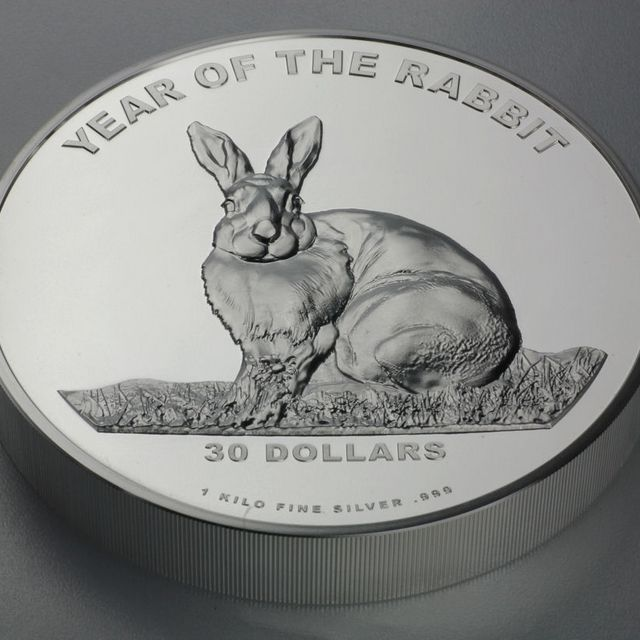 2010 Jear of the Rabbig